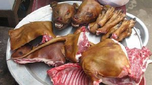 Tanzanian meat consumers told to consider animal welfare
